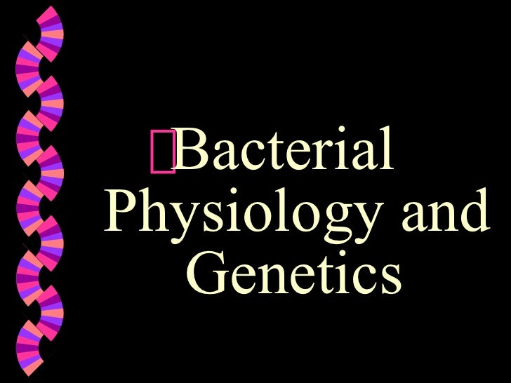 <ul><li>Bacterial  Physiology and Genetics   </li></ul>