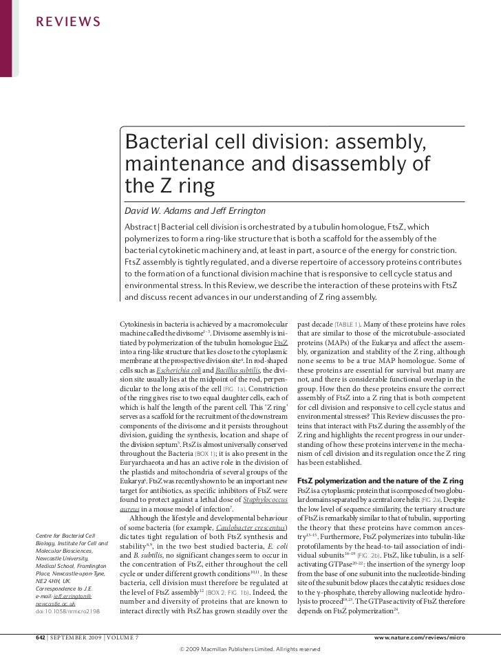 REVIEWS                                   Bacterial cell division: assembly,                                   maintenance...