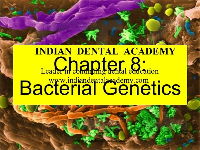 INDIAN DENTAL ACADEMY  Chapter 8: Bacterial Genetics Leader in continuing dental education www.indiandentalacademy.com  ww...