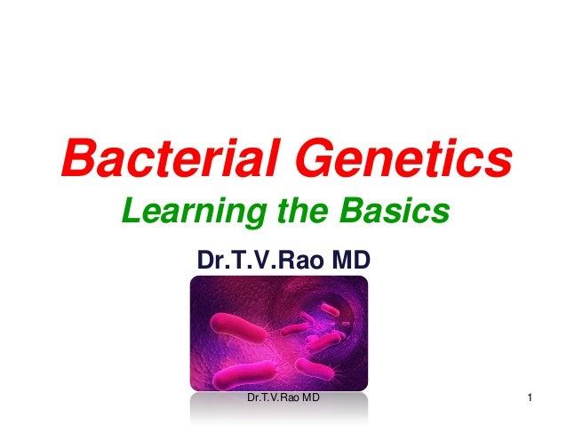 Bacterial Genetics  Learning the Basics      Dr.T.V.Rao MD         Dr.T.V.Rao MD   1