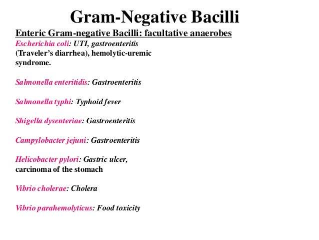 Gastroenteritis Uti