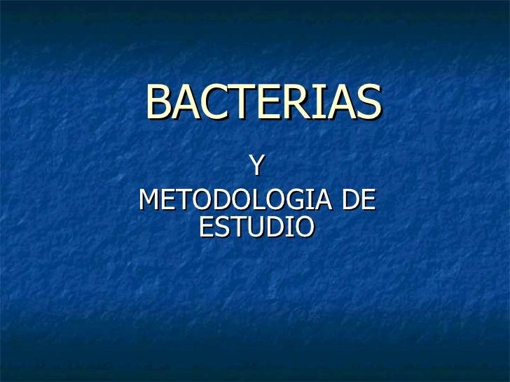 BACTERIAS Y METODOLOGIA DE ESTUDIO