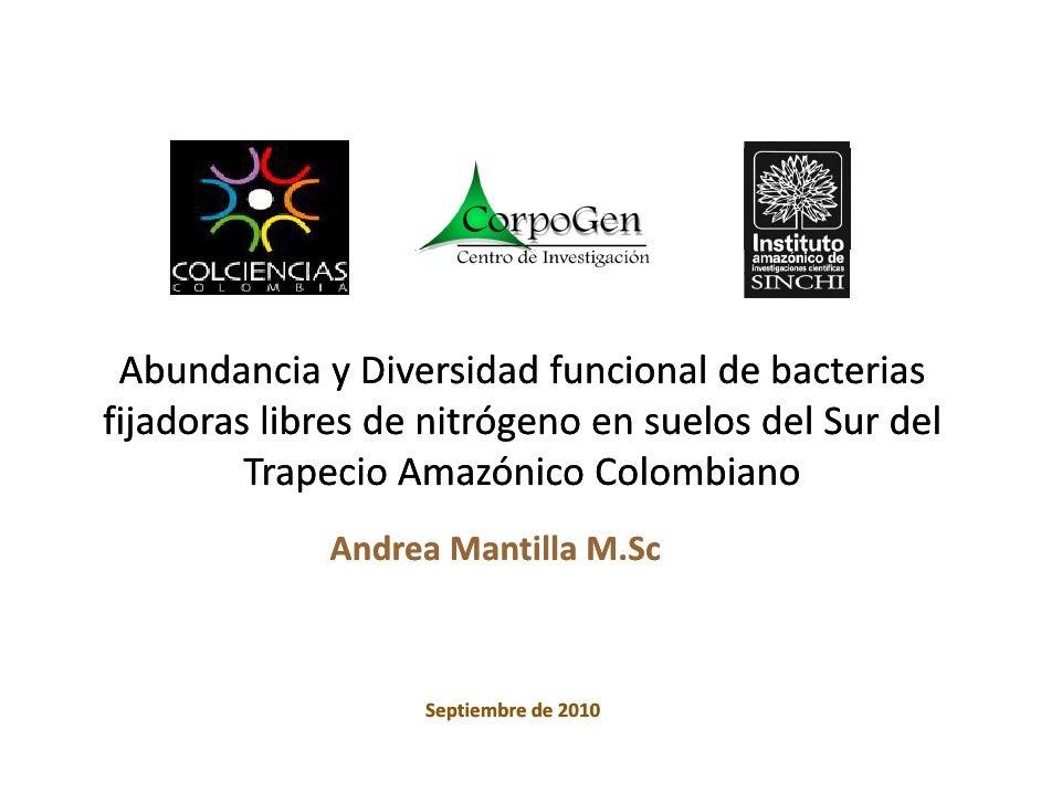AbundanciayDiversidadfuncionaldebacterias fijadoraslibresdenitrógenoensuelosdelSurdel          TrapecioAma...