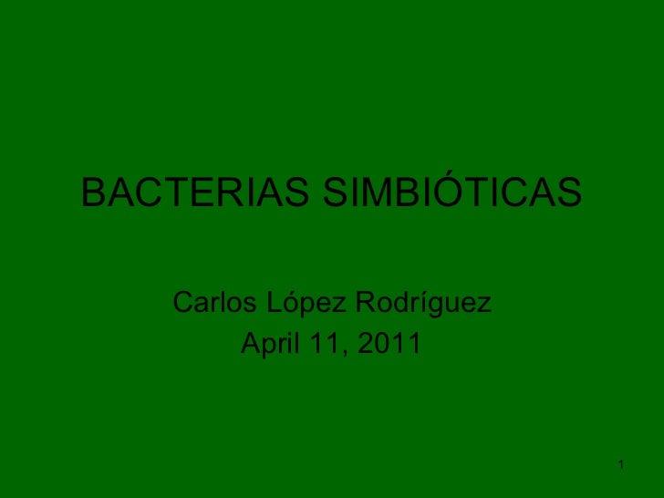 Bacterias simbióticas
