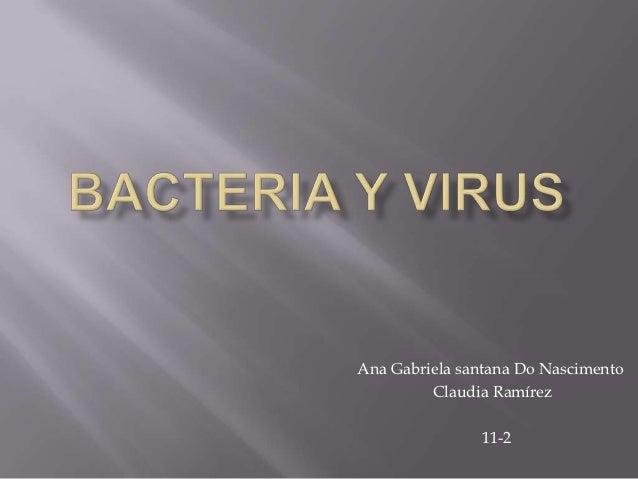 Bacteria y virus