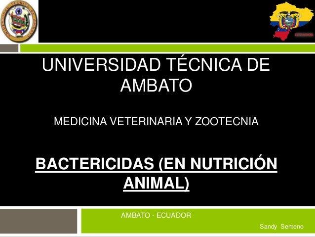 UNIVERSIDAD TÉCNICA DE AMBATO MEDICINA VETERINARIA Y ZOOTECNIA  BACTERICIDAS (EN NUTRICIÓN ANIMAL) AMBATO - ECUADOR Sandy ...
