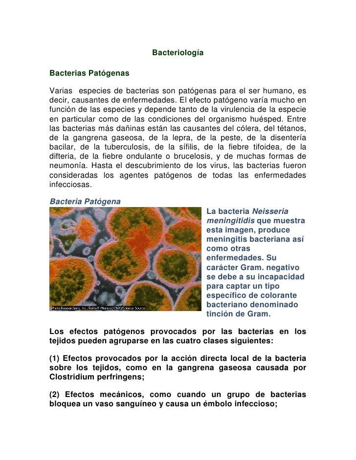 BacteriologíaBacterias PatógenasVarias especies de bacterias son patógenas para el ser humano, esdecir, causantes de enfer...