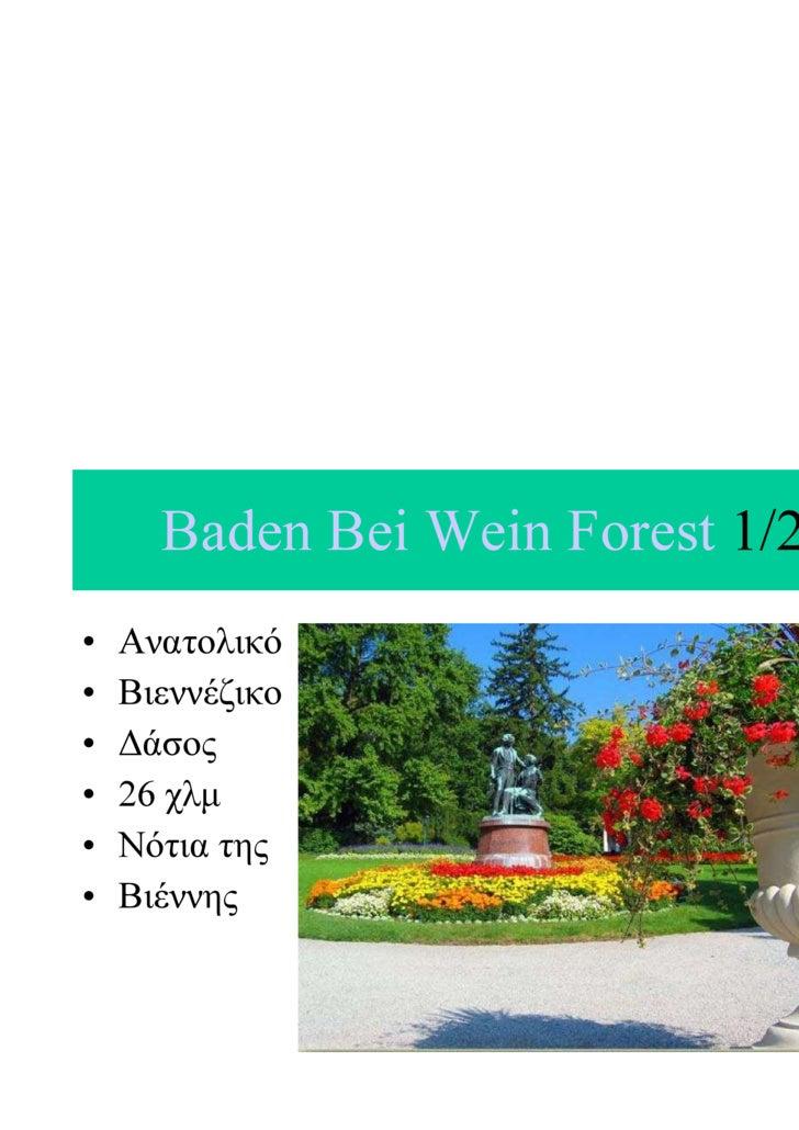 Baden Bei Wein Forest 1