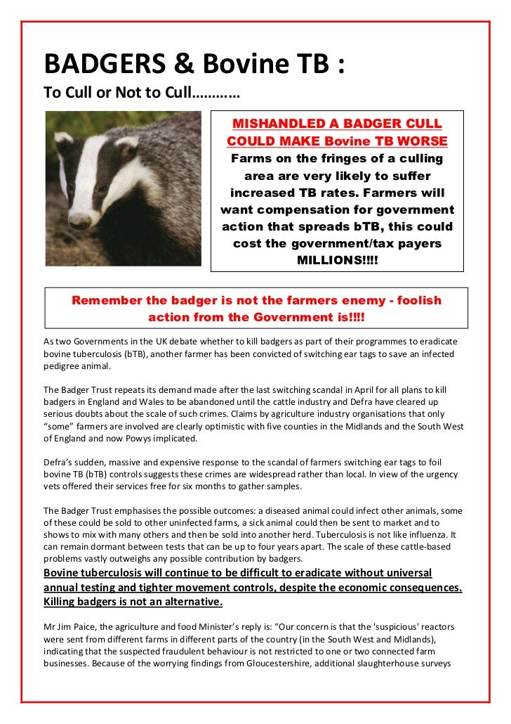 Badgers & bovine tb to cull or not to cull!