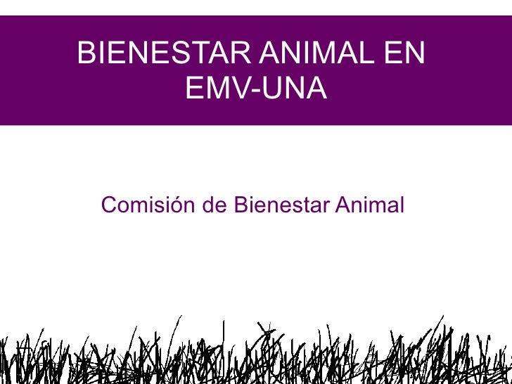 BIENESTAR ANIMAL EN  EMV-UNA Comisión de Bienestar Animal