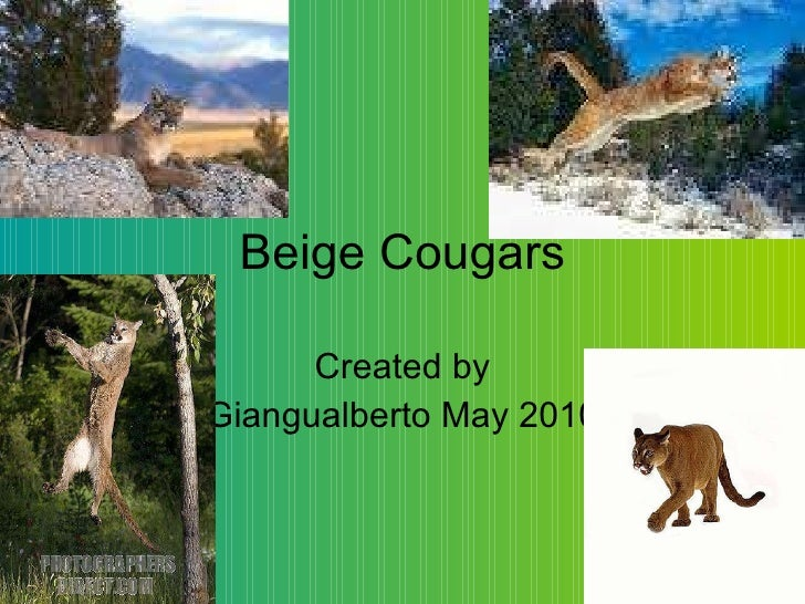 Beige Cougars Created by Giangualberto May 2010