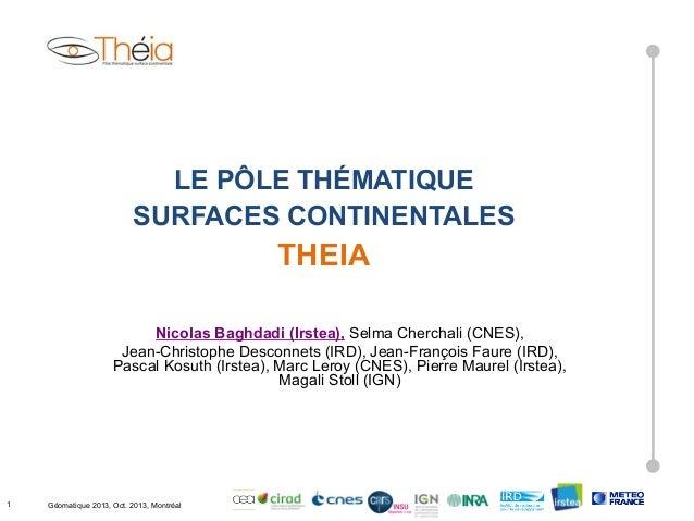 LE PÔLE THÉMATIQUE SURFACES CONTINENTALES  THEIA Nicolas Baghdadi (Irstea), Selma Cherchali (CNES), Jean-Christophe Descon...
