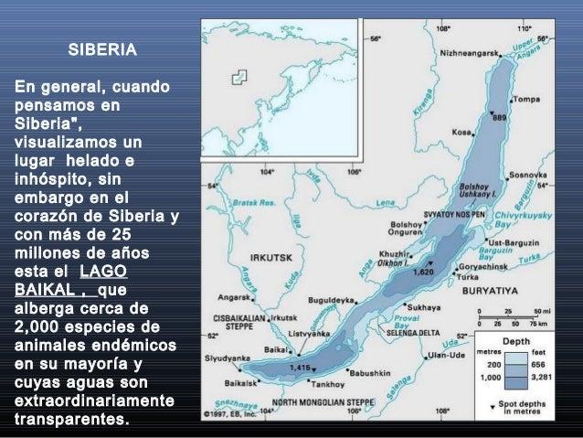 """SIBERIA En general, cuando pensamos en Siberia"""", visualizamos un lugar helado e inhóspito, sin embargo en el corazón de Si..."""