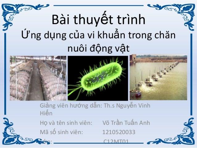 Bài thuyết trìnhỨng dụng của vi khuẩn trong chănnuôi động vậtGiảng viên hƣớng dẫn: Th.s Nguyễn VinhHiểnHọ và tên sinh viên...