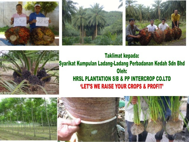 We are proud to present • Best fertilizers • Best soil conditioner * Variety products • Competitive price * Best Results •...