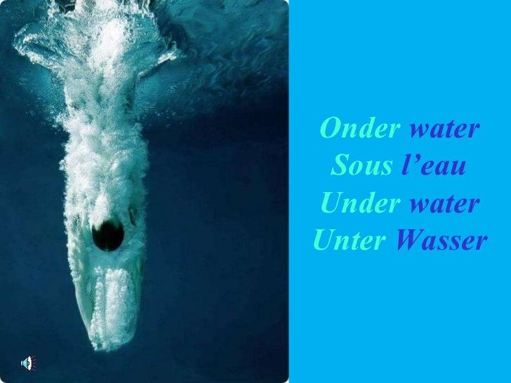 Onder   water Sous  l'eau Under   water Unter   Wasser