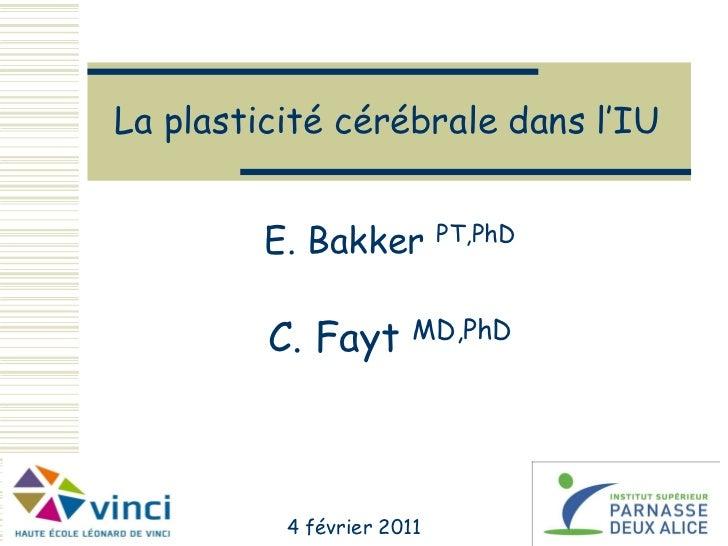 La plasticité cérébrale dans l'IU         E. Bakker         PT,PhD         C. Fayt       MD,PhD          4 février 2011   ...