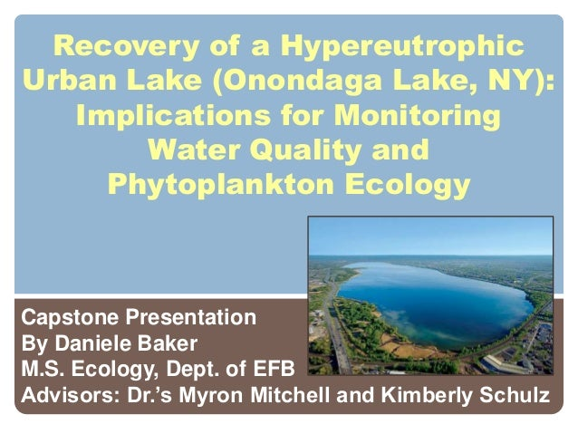 Recovery of a Hypereutrophic Urban Lake (Onondaga Lake, NY):  Implications for Monitoring Water Quality and Phytoplankton Ecology