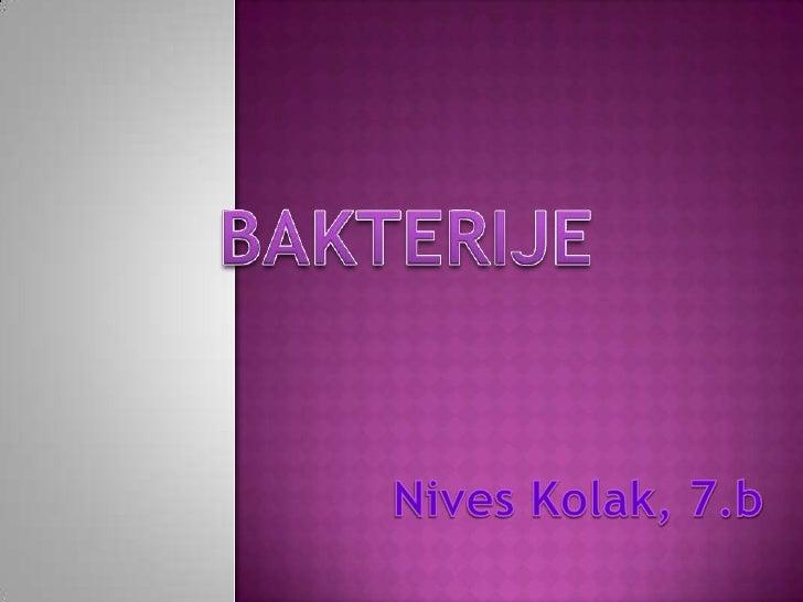 BAKTERIJE<br />Nives Kolak, 7.b<br />