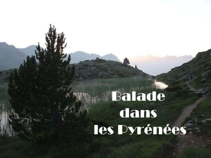 Balade  dans  les Pyrénées