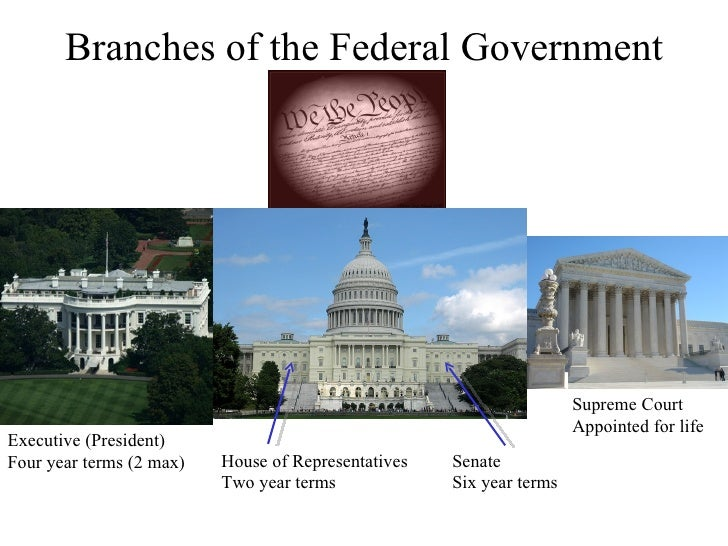 Branches of the Federal Government House of Representatives Two year terms Senate Six year terms Executive (President) Fou...