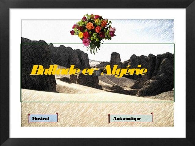 BalladeenAlgérie Musical Automatique
