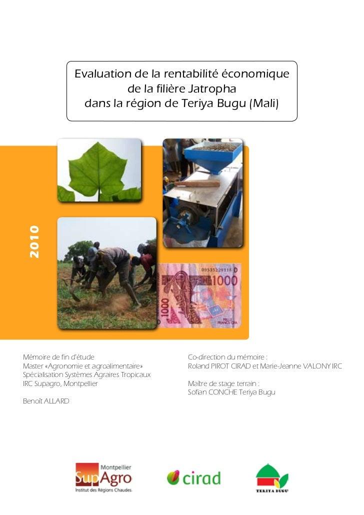 Evaluation de la rentabilité économique                          de la filière Jatropha                  dans la région de...