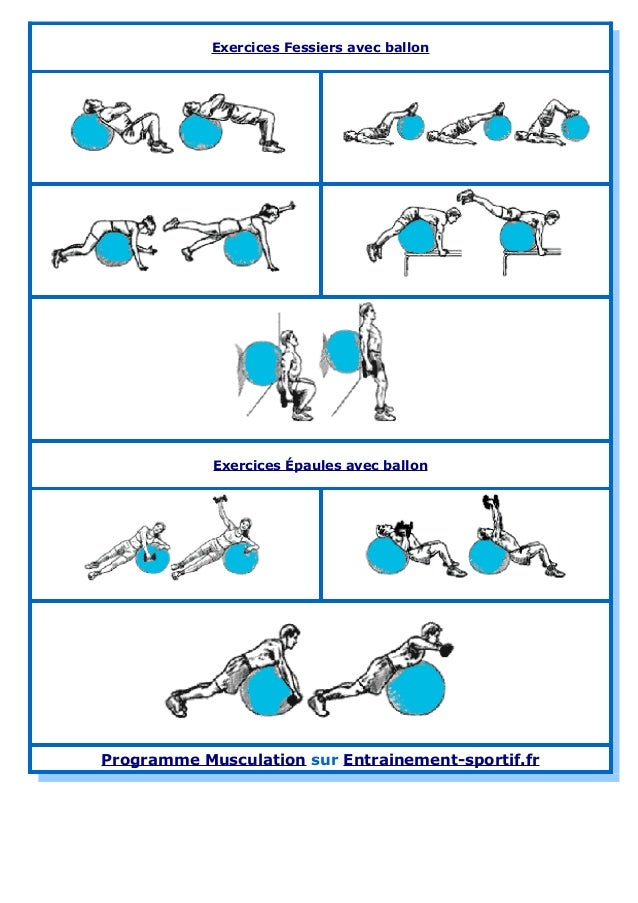 Ballon de gym exercices de tonification musculaire for Programme entrainement sportif