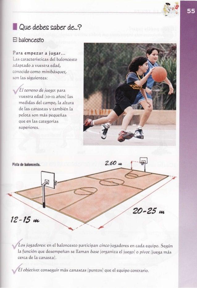 I Quedebessaber             de,.?EfbaloncestoP ara empezar a jugar... -es característtcas del baloncesto  japtado a vsestr...