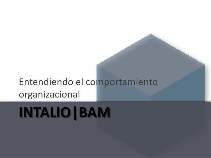 Intalio|BAM - Entendiendo el comportamiento organizacional