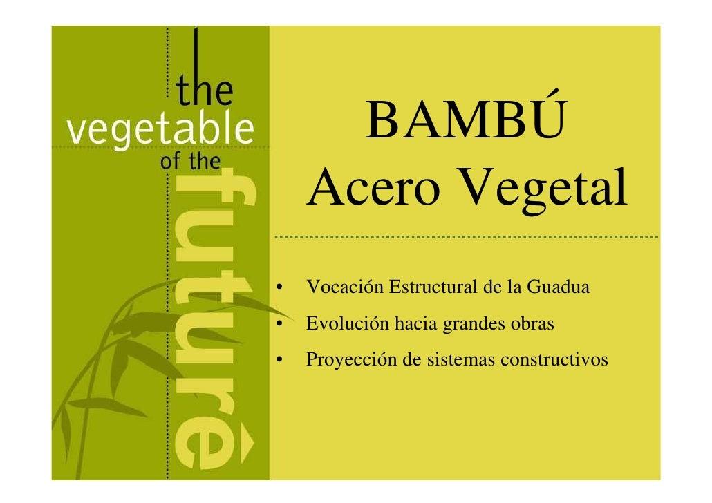 BAMBÚ     Acero Vegetal •   Vocación Estructural de la Guadua •   Evolución hacia grandes obras •   Proyección de sistemas...