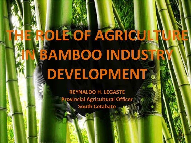 THE ROLE OF AGRICULTURE IN BAMBOO INDUSTRY DEVELOPMENT REYNALDO H. LEGASTE Provincial Agricultural Officer South Cotabato