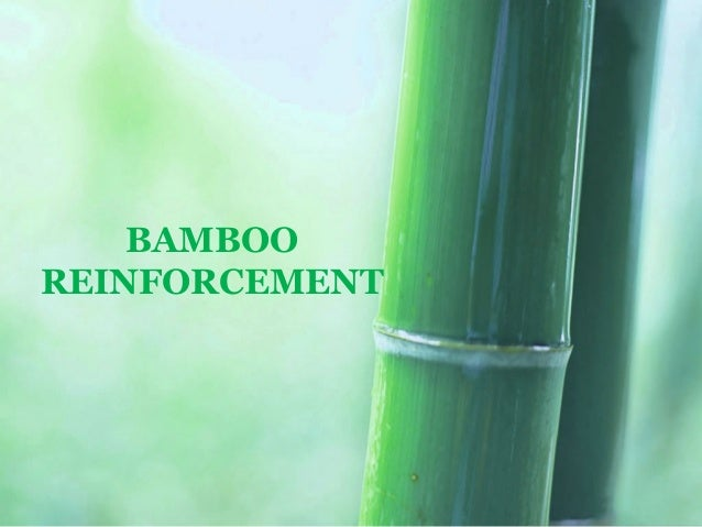 Bamboo Reinforcement