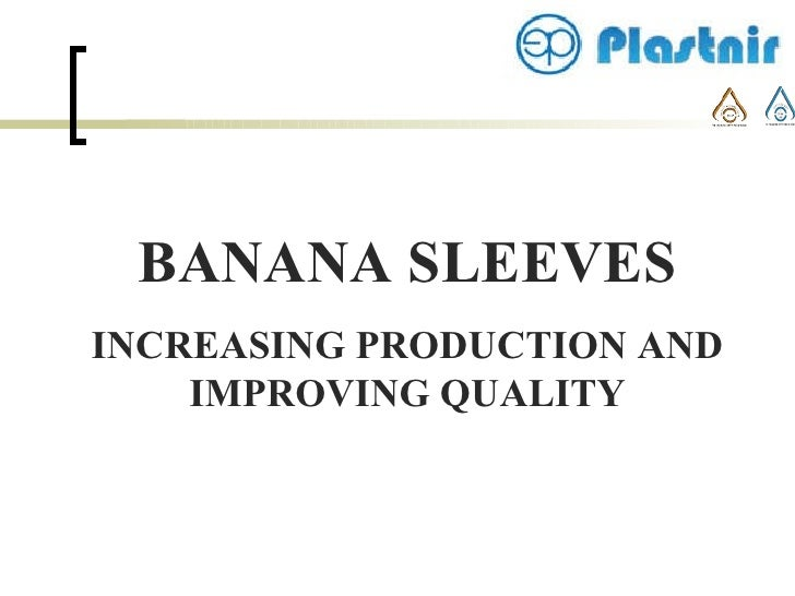 BANANA SLEEVES INCREASING PRODUCTION AND IMPROVING QUALITY