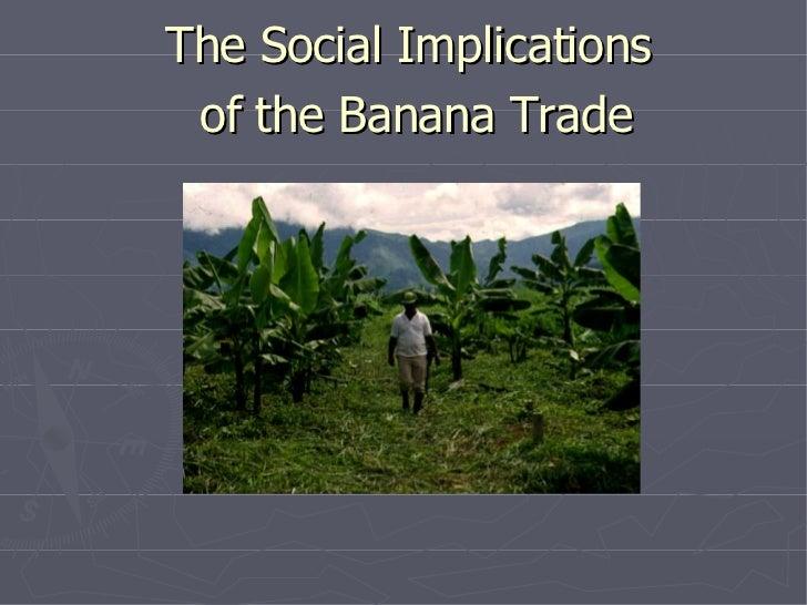 Social Implications of the Banana Trade