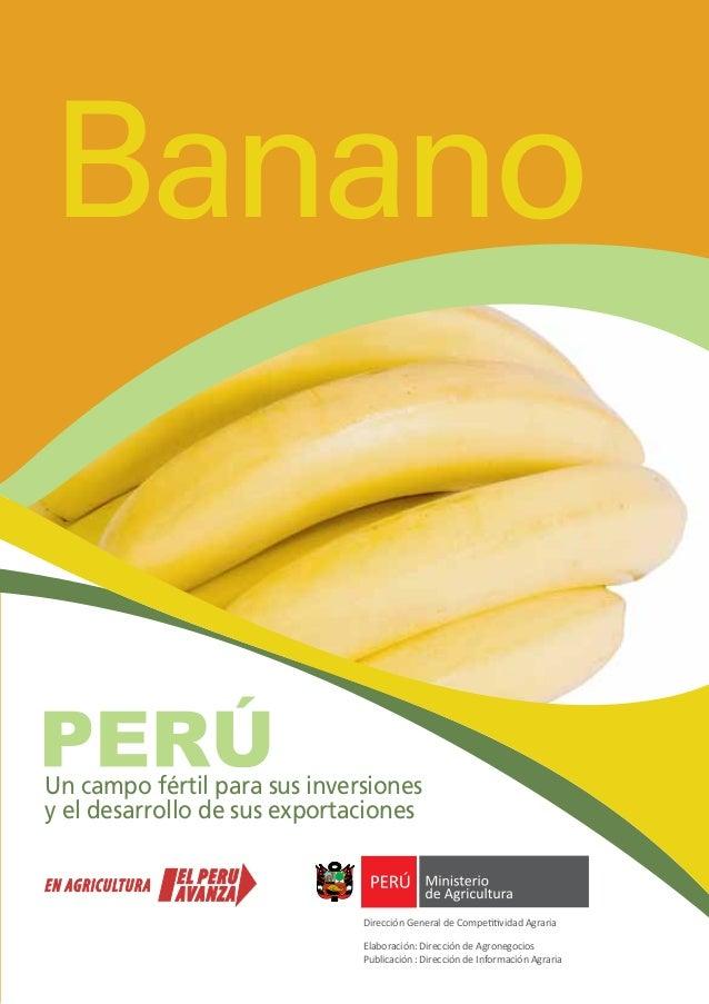 Banano Un campo fértil para sus inversiones y el desarrollo de sus exportaciones Dirección General de Competitividad Agrar...