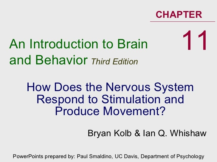 How Does the Nervous System Respond to Stimulation and Produce Movement? An Introduction to Brain and Behavior   Third Edi...