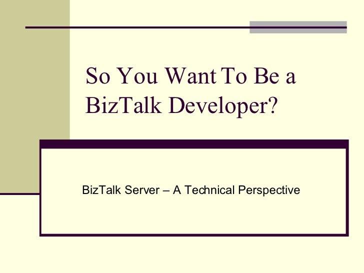 So You Want To Be a BizTalk Developer? BizTalk Server – A Technical Perspective