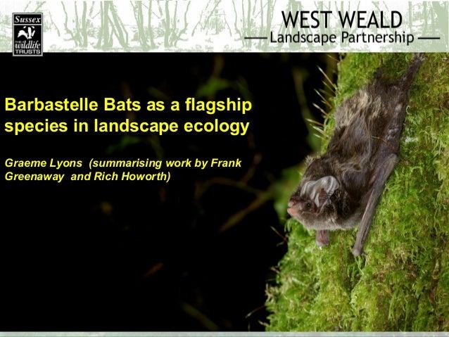 West Weald Landscape Project Conference: Barbastelle bat 2014