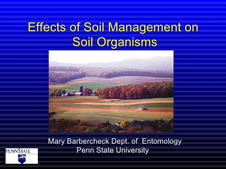 Effects of Soil Management on        Soil Organisms   Mary Barbercheck Dept. of Entomology          Penn State University