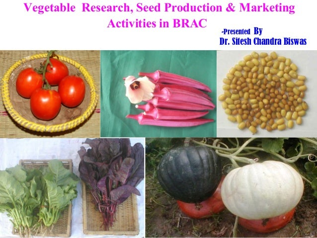 Vegetable Research, Seed Production & Marketing              Activities in BRAC                                  -Presente...