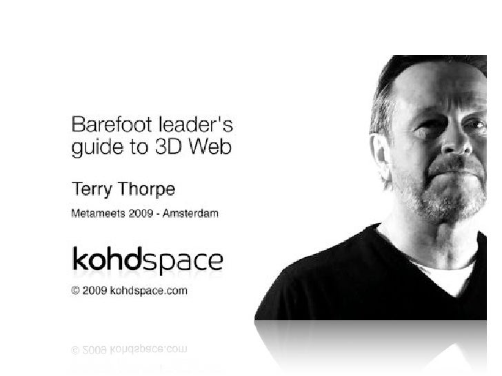 Barefoot Leader's Guide to 3D Web     Terry Thorpe