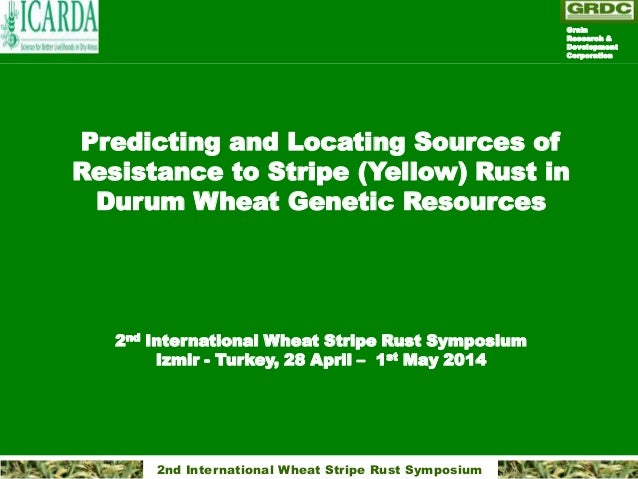 2nd International Wheat Stripe Rust Symposium Predicting and Locating Sources of Resistance to Stripe (Yellow) Rust in Dur...