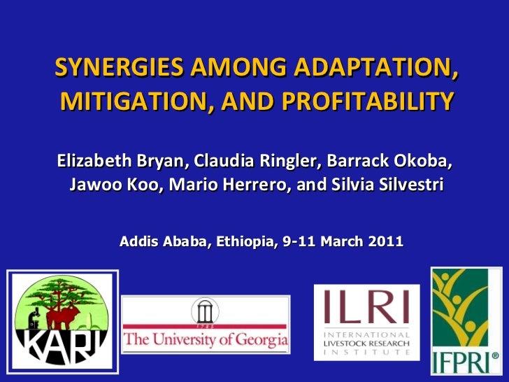 SYNERGIES AMONG ADAPTATION, MITIGATION, AND PROFITABILITY Elizabeth Bryan, Claudia Ringler, Barrack Okoba, Jawoo Koo, Mari...