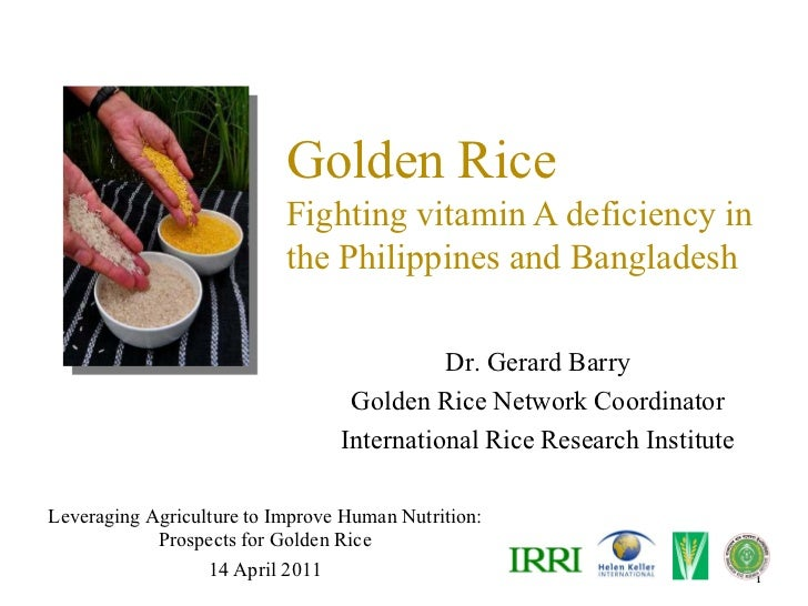 Golden Rice                           Fighting vitamin A deficiency in                           the Philippines and Bangl...