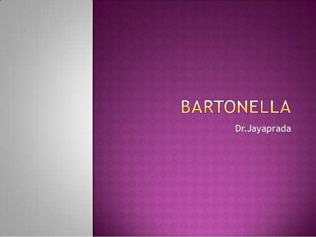 Bartonella.jp