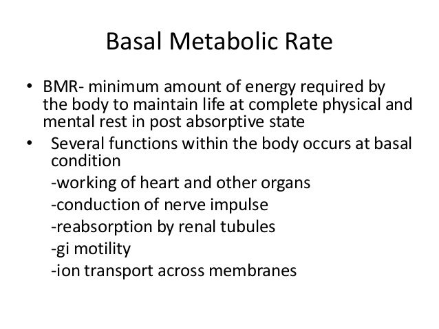 basal metabolic rate definition medical dictionary