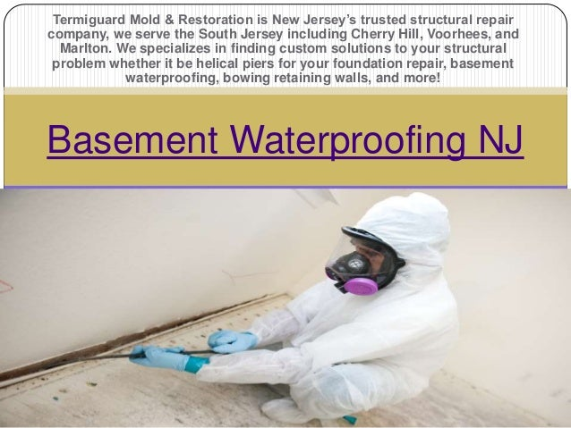 termiguard mold restoration is new jersey s trusted structural
