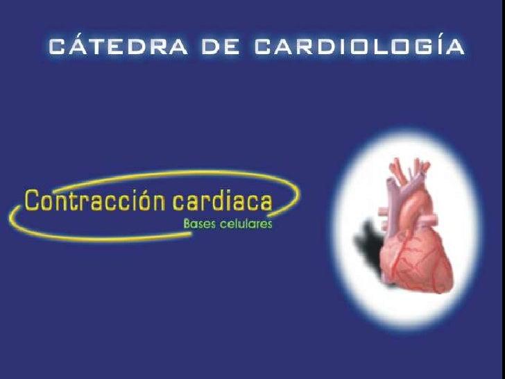 Bases celulares de la contracción cardíaca