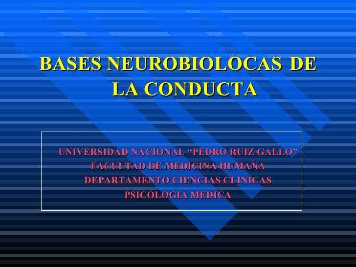 """<ul><li>BASES NEUROBIOLOCAS   DE LA CONDUCTA </li></ul><ul><li>UNIVERSIDAD NACIONAL """"PEDRO RUIZ GALLO"""" </li></ul><ul><li>F..."""